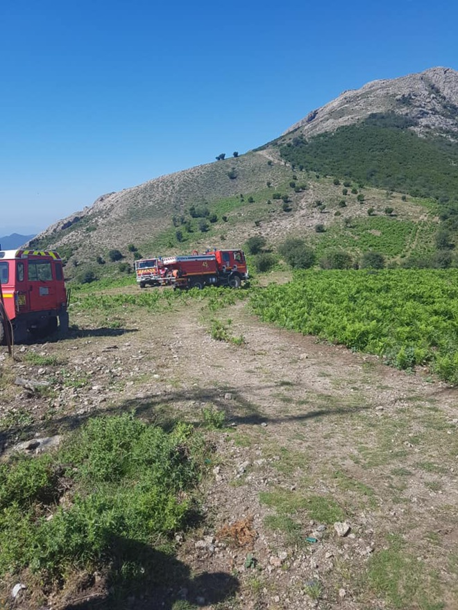 Formation feux de forêts niveau 1 au CIS Vico (FDF1)