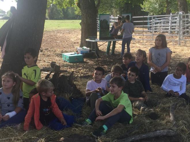 """""""Agri' Gustu 2018"""" : Les écoliers de Vico et Sagone au coeur d'une exploitation"""
