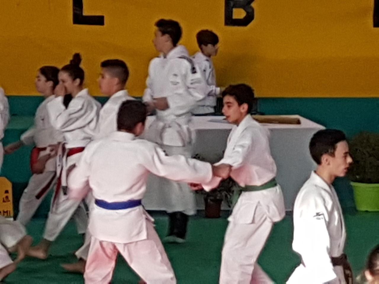 Deux titres en Judo pour notre vicolais Sébastien Mannu