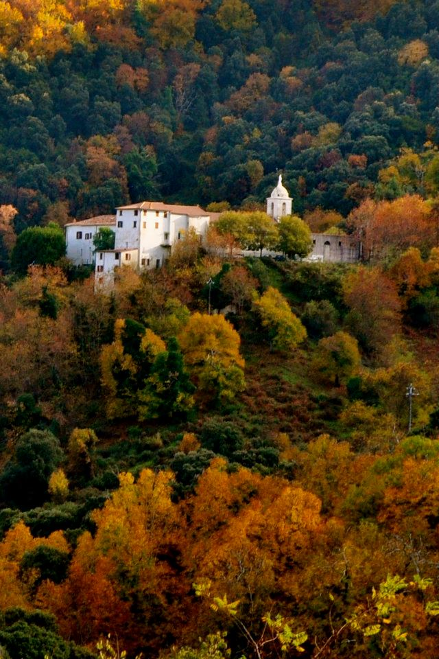 Un site internet pour le couvent de Vico