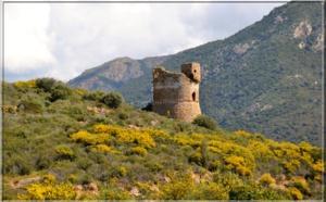 La tour génoise de Sagone